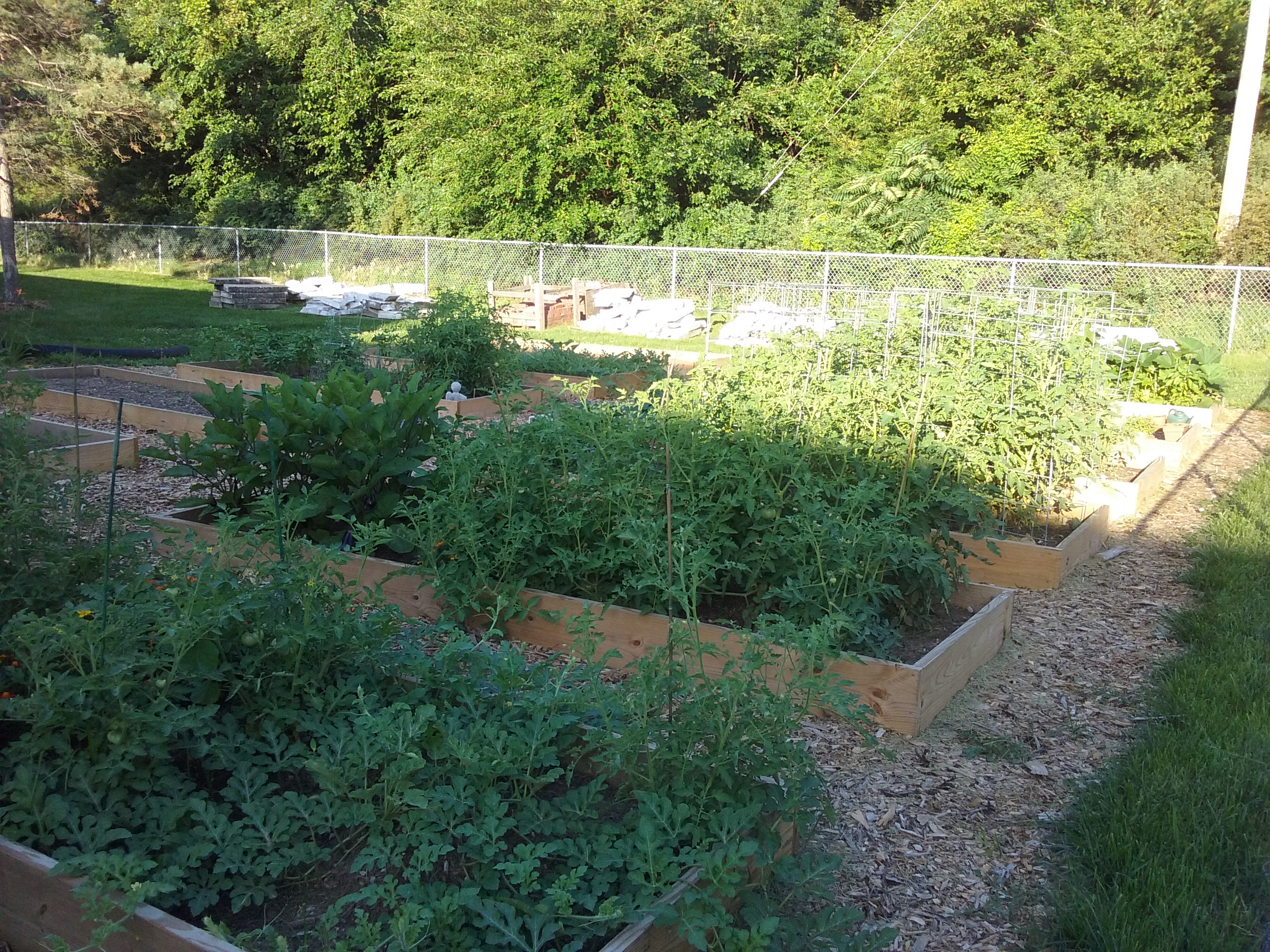 The St. Pius X Community Garden Is Located To The West Of The Fr. Ou0027Brien  Parish Center.
